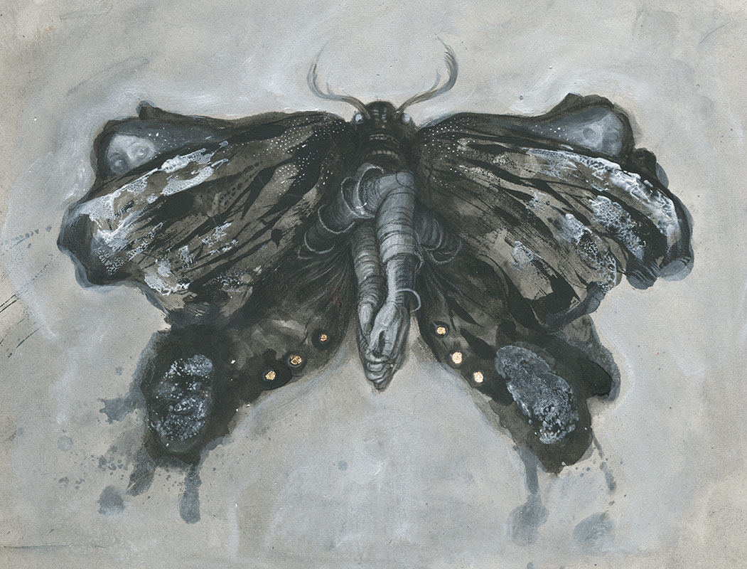 Moth illustration by Jana Heidersdorf