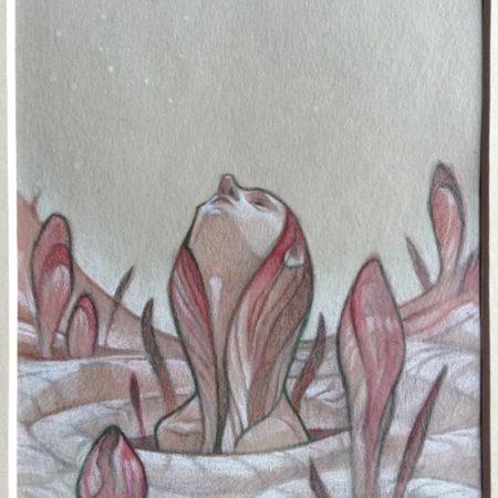 Seasons by Wylie Beckert