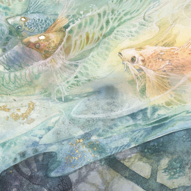 Seeking by Stephanie Law (details)