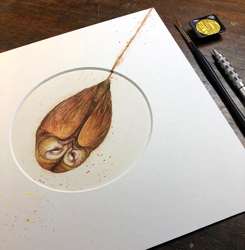 owlfaery detail2 - by Iris Compiet