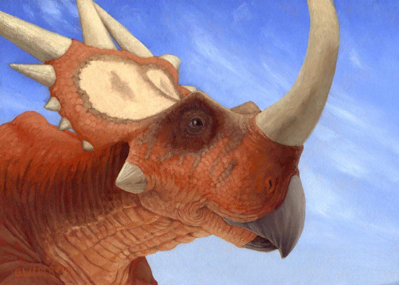 Rubeosaurus_Owen_Wiliam_Weber